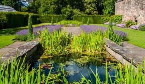 Percy-Cane-Garden2