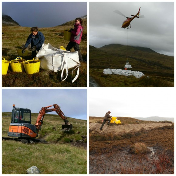 peat-restoration-collage