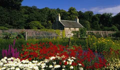 Inside the Walled Garden at Culzean