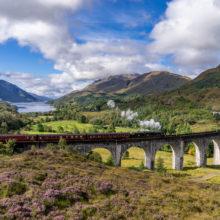 Scotland Zoom Background - Glenfinnan