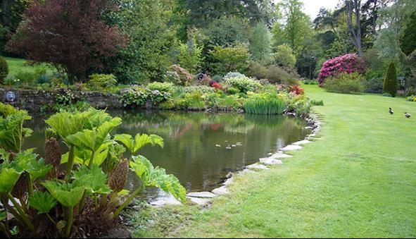 Dowhill gardens