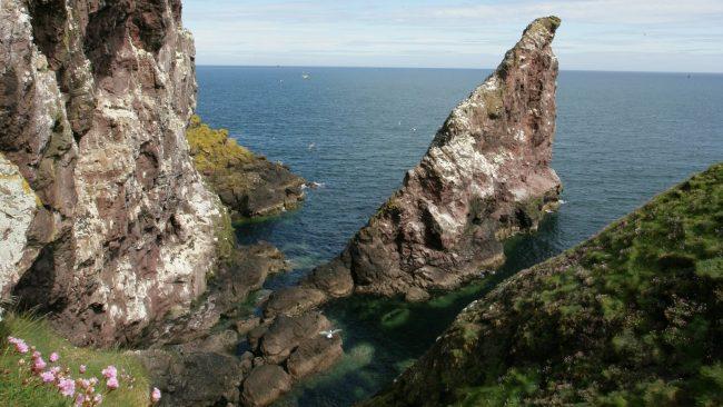 St Abb's Head is a rocky promontory
